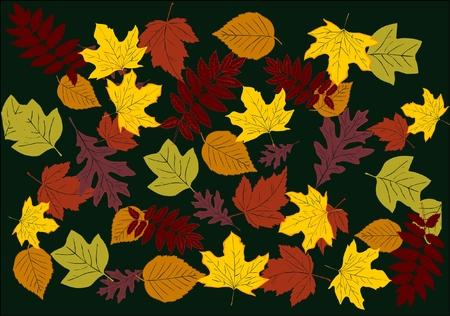 Autumn seamless background