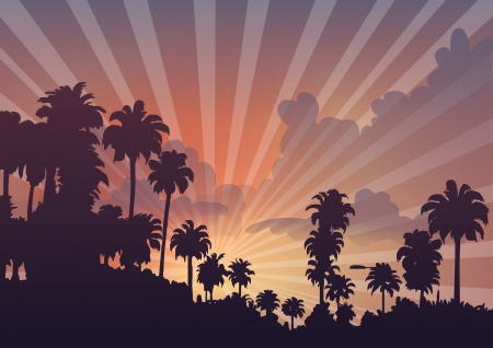 palm trees in sunset Stock Photo - 17807316