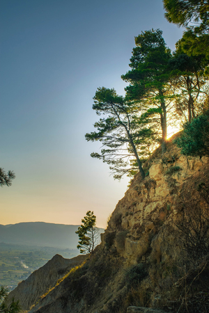 Sunset between pines on a cliff, Zakynthos