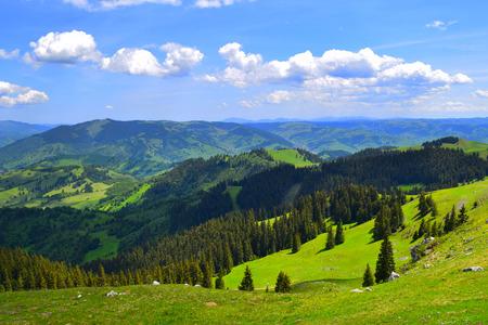 Transylvania-Mountain pasture landscape
