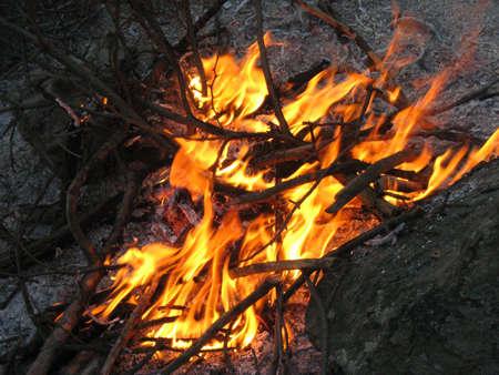 miser: bonfire