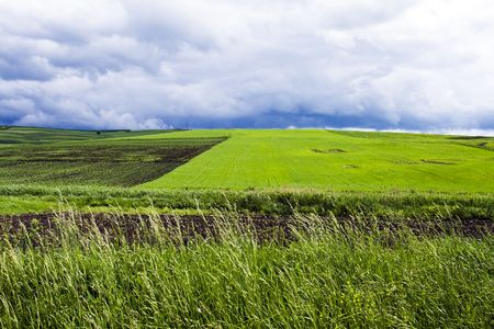 Background with green field and blue clouds photo