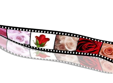 Rose collection on old film strip Stock Photo - 3679310