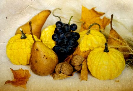 Autumn still life photo