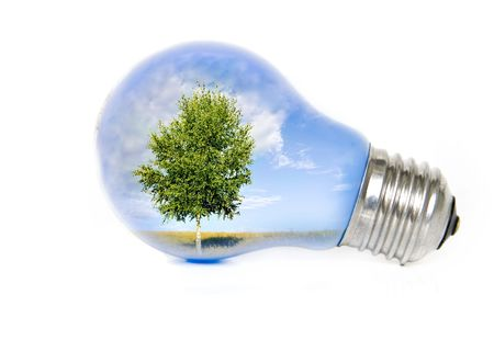 welfare plant: Summer landscape with tree in light bulb symbolizing green energy