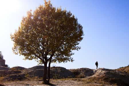 Landscape with tree and walking man photo