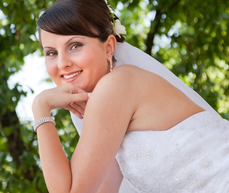 Portrait of the beautiful bride Stock Photo - 7354340