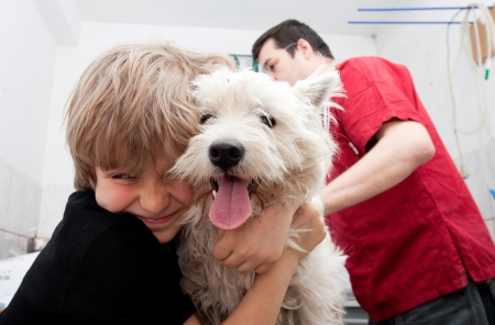 Little boy holding his Westie while the veterinarian is preparing to give a vaccine