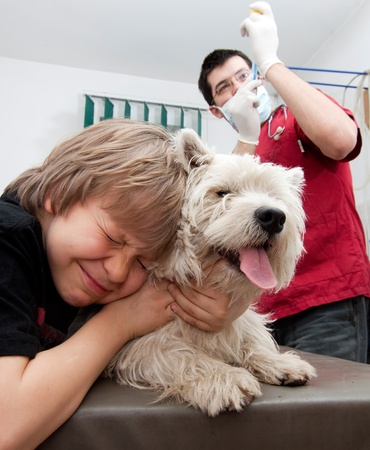 Little boy holding his Westie while the veterinarian is preparing to give a vaccine  photo