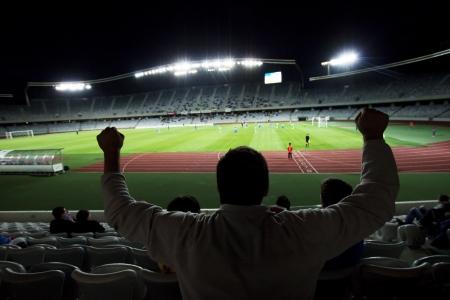 sports venue: Estadio con las siluetas de los fans