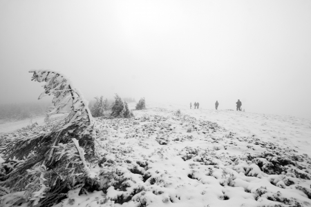 Group of people trekking in foggy winter landscape going to the top