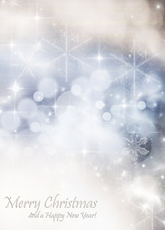 Light abstract Christmas background with white snowflakes Stock Photo - 16838709