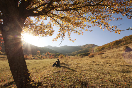 Colorful autumn tree at sunset with woman sitting and contemplating nature  photo