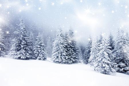 Kerst achtergrond met besneeuwde dennenbomen