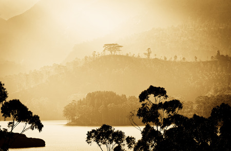 Panorama of the tea plantations and lake at sunset, Maskeliya, Sri Lanka Stock Photo