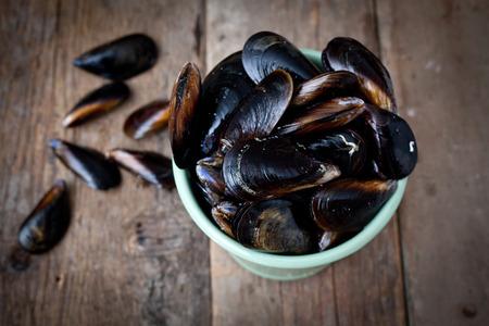 Mussels Reklamní fotografie