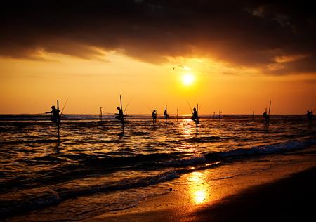 lanka: Silhouettes of the traditional stilt fishermen at the sunset near Galle in Sri Lanka