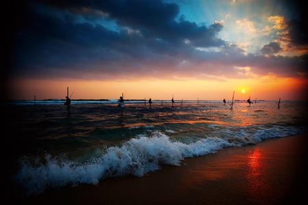 fishman: Silhouettes of the traditional stilt fishermen at the sunset near Galle in Sri Lanka