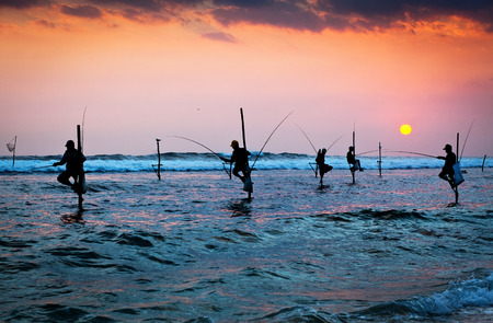 Silhouettes of the traditional stilt fishermen at the sunset near Galle in Sri Lanka