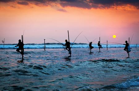 pescador: Siluetas de los pescadores zancos tradicionales en la puesta del sol cerca de Galle en Sri Lanka