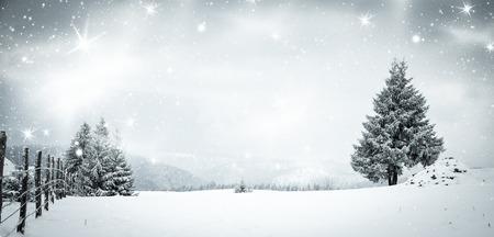 Navidad de fondo del paisaje de invierno cubierto de nieve con nieve o escarcha cubrió abetos y copia espacio - vacaciones de invierno mágica Foto de archivo