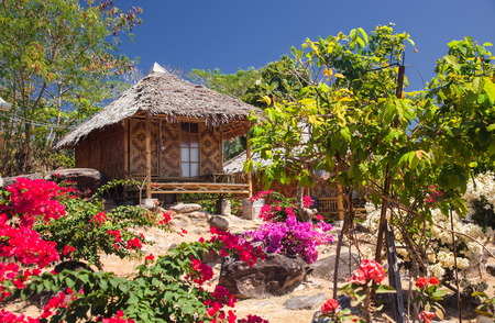 wooden bungalows in tropical garden on ko phi phi island, Thailand