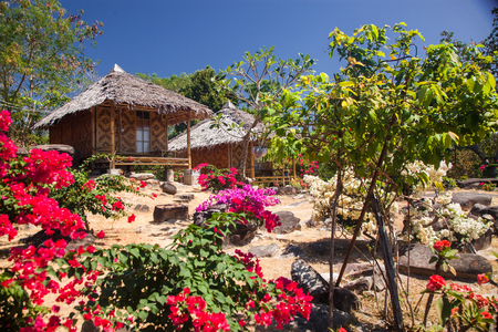 wooden bungalows in tropical garden on ko phi phi island, Thailand