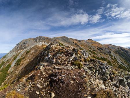 enebro: Trekking en las montañas de Calimani, Rumania