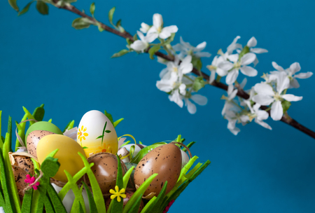 easter eggs in basket and apple blossom