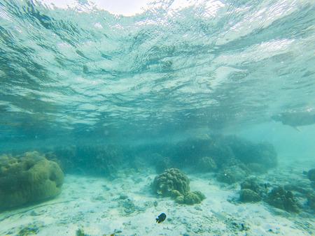 tropical blue ocean underwater background - luxury nature pattern Stock Photo - 121279775