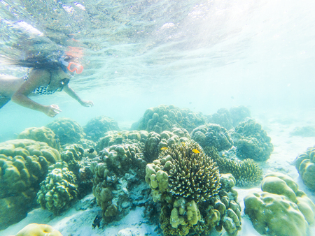 woman snorkeling in crystal clear tropical waters