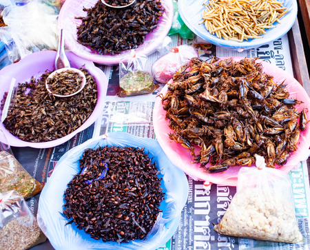fried insects and crickets as delicacy on a market in northern Thailand