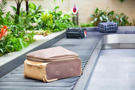 Maleta en una cinta transportadora rodeada de plantas tropicales verdes en un área de reclamo de equipaje en el aeropuerto.