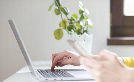 green office laptop smartphone and tropical plants Reklamní fotografie