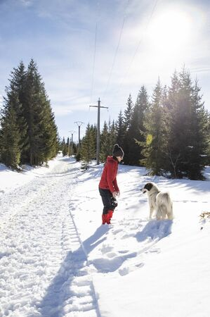 happy woman and dog playing in fresh snow Stock Photo