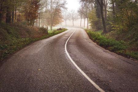 curvy road in beautiful foggy forest in autumn 版權商用圖片