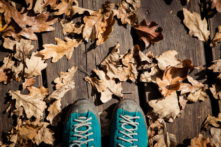 autumn background trekking shoes and colorful foliage 版權商用圖片