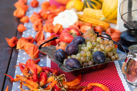 fresh autumn fruits and vegetables thanksgiving Standard-Bild