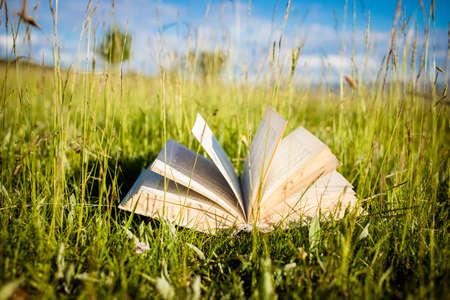 open book in green field