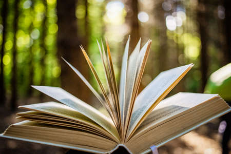 open book in forest reading in nature