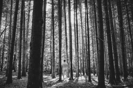 naked man in the middle of tall fir trees in forest