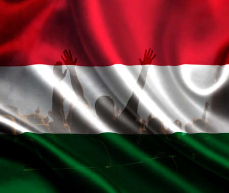 football fans supporting Hungary - crowd celebrating in stadium with raised hands against Hungary flag