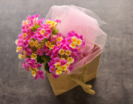lantana: Beautiful bouquet of bright flowers.  Lantana. Lovely small flowers. Stock Photo