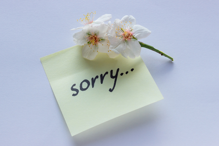 Handwritten note -  Sorry. Small delicate white flowers of almonds. Foto de archivo - 97502777