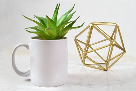 A white 11 oz. coffee holds an aloe vera plant while an abstract gold sculpture classes up the background in this green modern mockup. Ready for you to add your own design to the coffee cup.