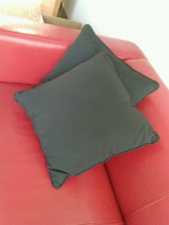 pillows: Red couch