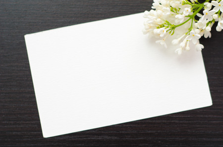 funeral background: white greeting card with flowers on a black background Stock Photo