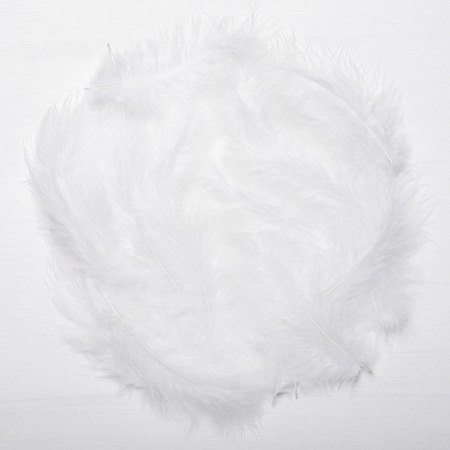 A bunch of white feathers on white wooden background. Round frame. Top view, flat lay.