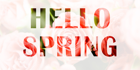 Spring background, banner. The inscription Hello Spring on the background of pink roses. Multiple exposure, double exposure Stock fotó