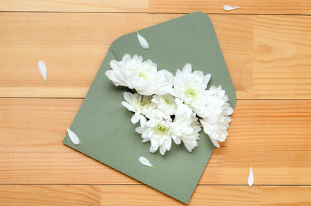 White flowers of chrysanthemum in a green envelope on a wooden background. Spring congratulation gift. Top view, flat lay Stock fotó